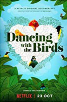 رقص با پرندگان
