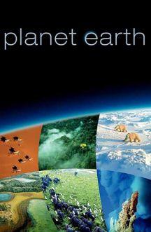 زمین سیاره شگفت انگیز